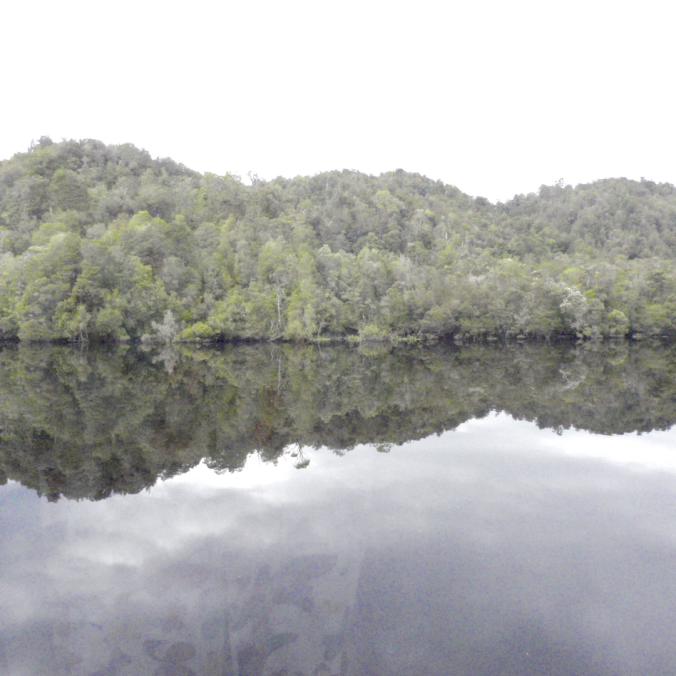 Gordon River, Tasmania 10