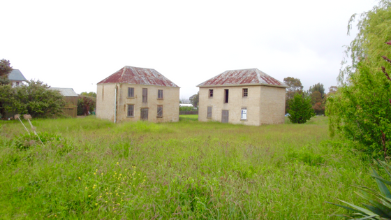 Old and New in Tasmania 5