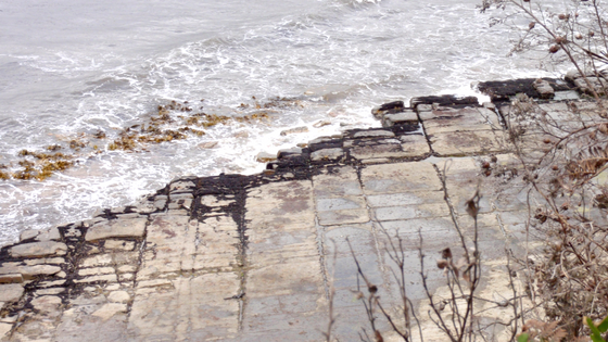 tessellated pavement 3